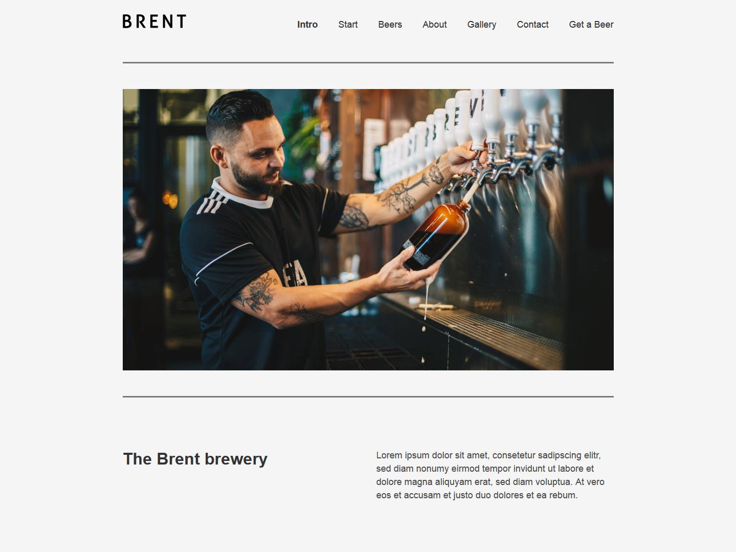 Website-Vorschau »Landingpage« des Templates »Brent Pro«