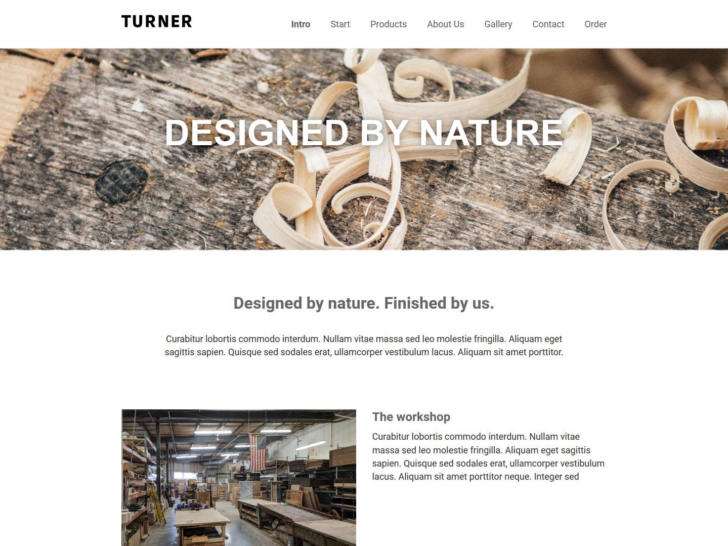 Website-Vorschau »Landingpage« des Templates »Turner Pro«