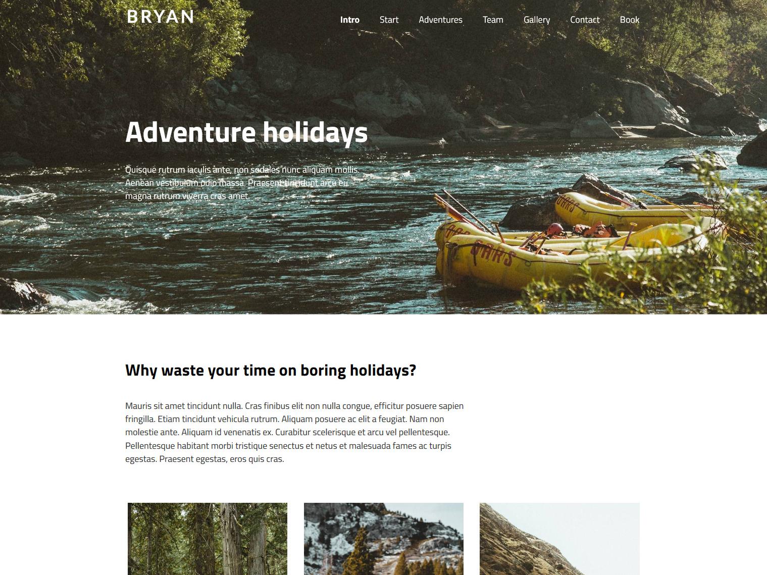 Website-Vorschau »Landingpage« des Templates »Bryan Pro«