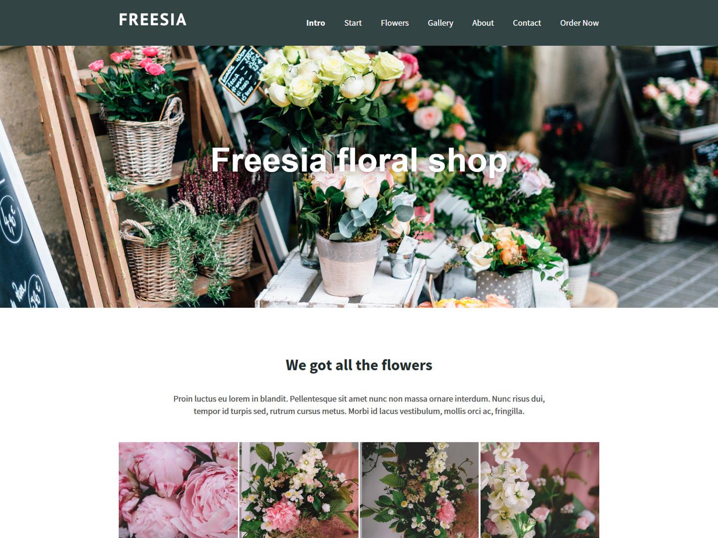 Website-Vorschau »Landingpage« des Templates »Freesia Pro«