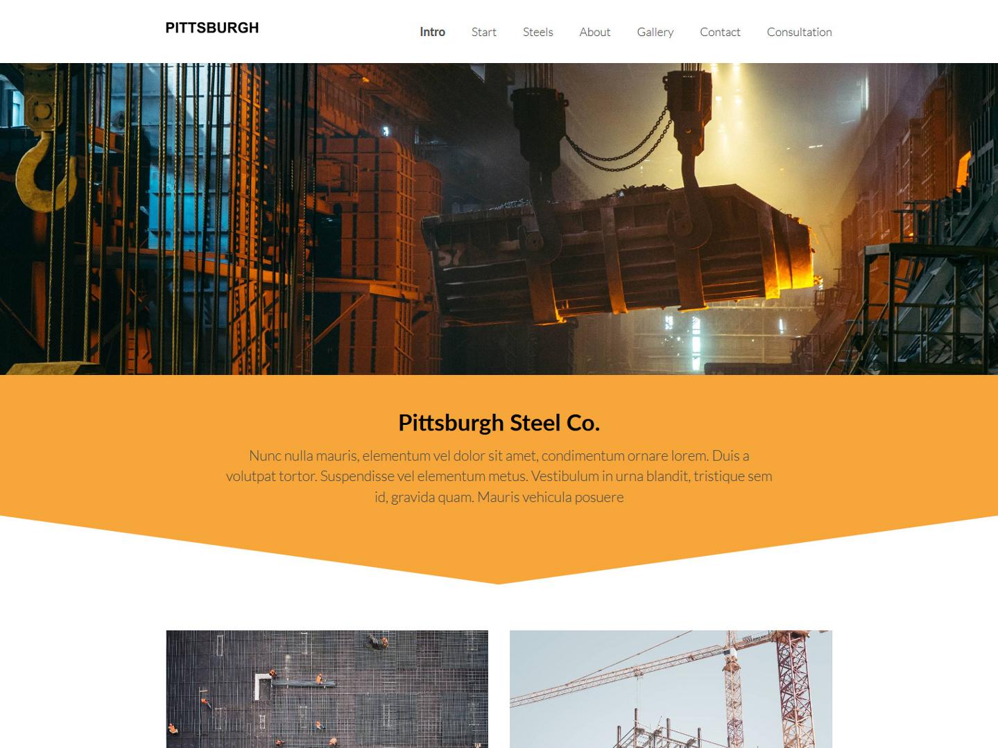 Website-Vorschau »Landingpage« des Templates »Pittsburgh Pro«