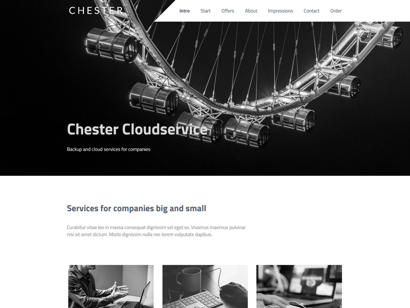 Website-Vorschau »Landingpage« des Templates »Chester Pro«