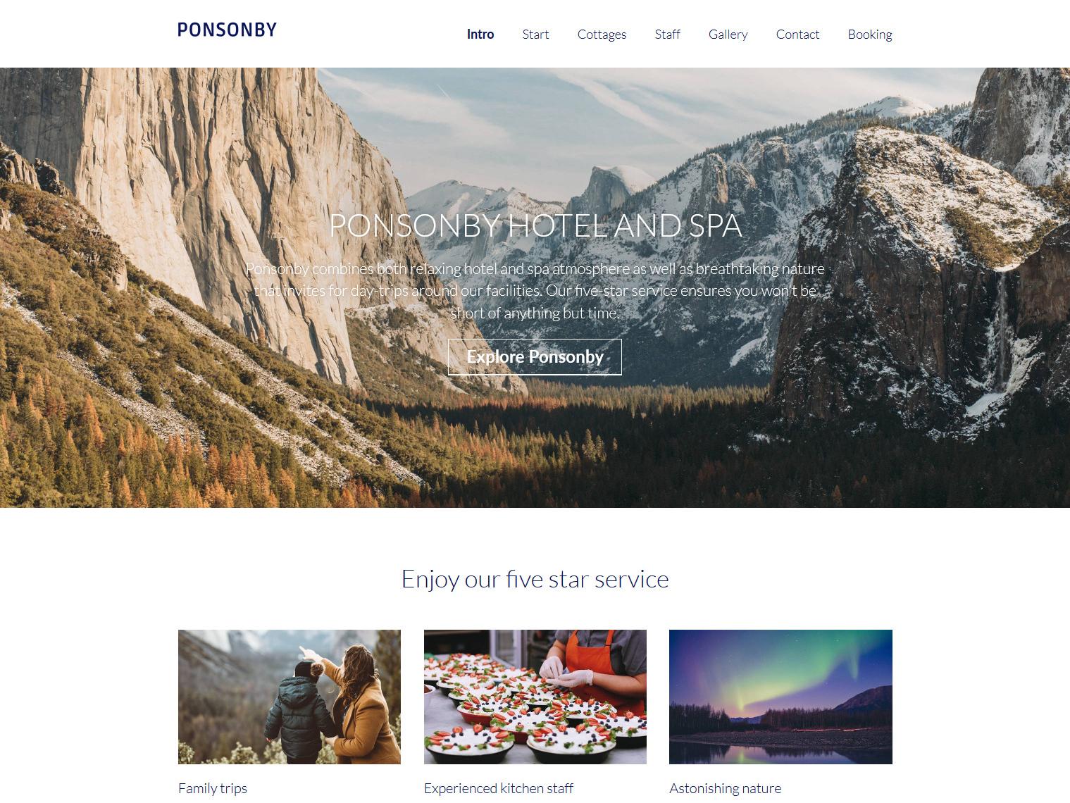 Website-Vorschau »Landingpage« des Templates »Ponsonby Pro«